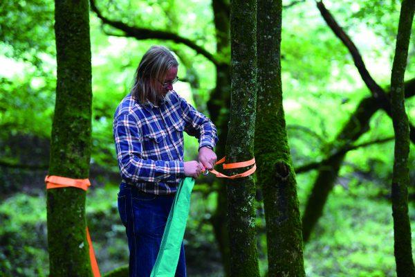 pocket swing - schommel - natuur - bomen - buiten speelgoed - houten speelgoed - speelgoed - dn houten tol - de mouthoeve - boekel - winkel - hape