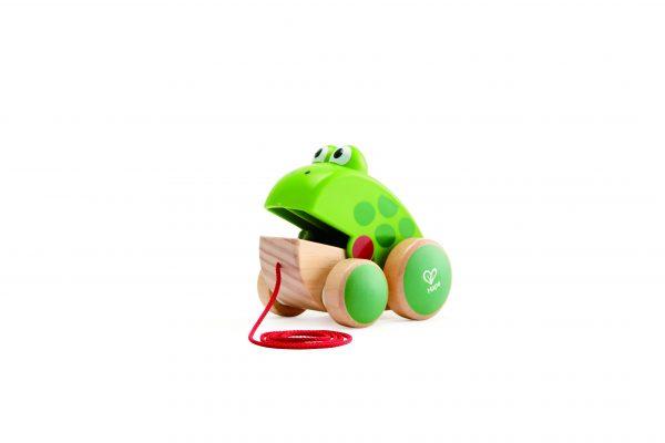 kikker trekdier - kikker - groen - hout - speelgoed - houten speelgoed - dn houten tol - de mouthoeve - boekel - hape - baby - peuter