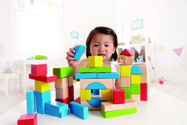 blokken 50 stuks - blokken - bouwen - speelgoed - hout - houten speelgoed - dn houten tol - de mouthoeve - boekel - winkel - hape - baby - peuter - kleuter